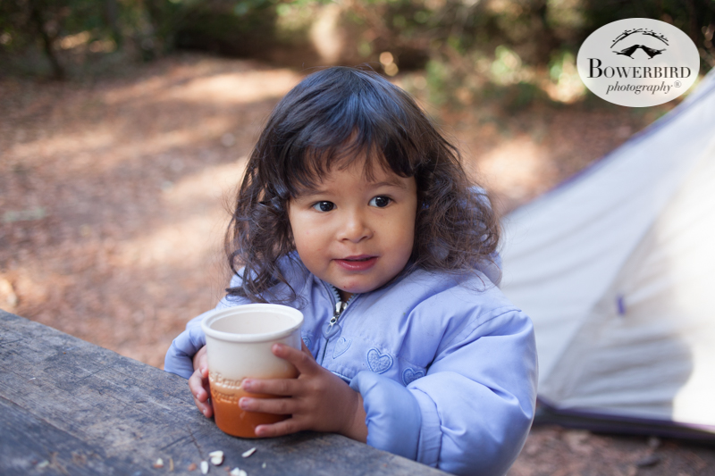 0022camping with kids in california samuel p taylor and bolinas © Bowerbird Photography 2017.jpg