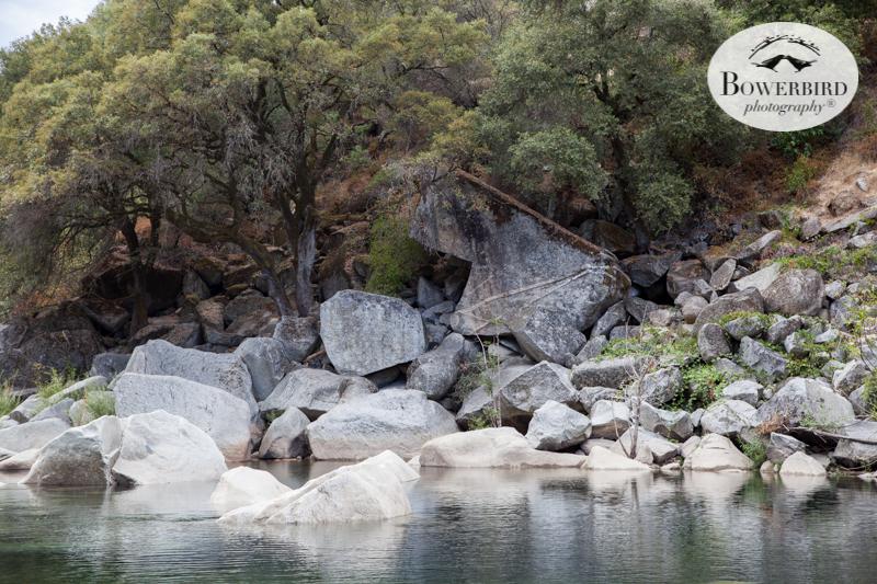 0010 travel with kids california yuba river © Bowerbird Photography 2017.jpg