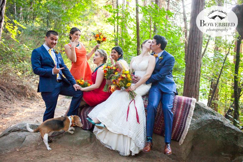 0513The Stone House Nevada City Wedding Photographer © Bowerbird Photography 2017.jpg