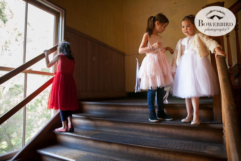 0507Headlands Ceneter for the Arts Wedding © Bowerbird Photography 2019.JPG