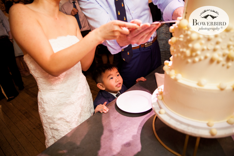 0904Headlands Ceneter for the Arts Wedding © Bowerbird Photography 2019.JPG
