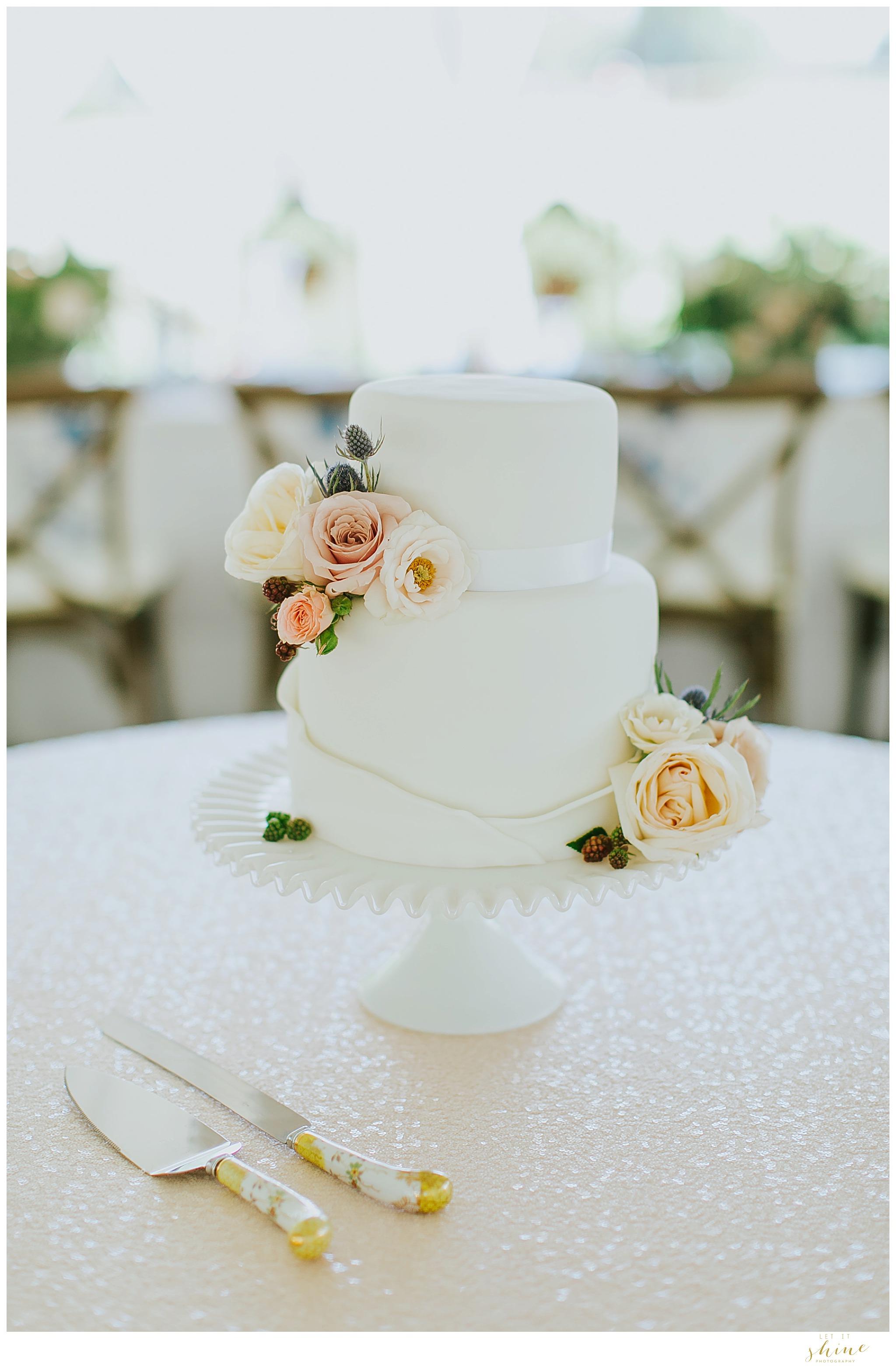 Boise Wedding Photographer St Johns Cathedral_0045.jpg