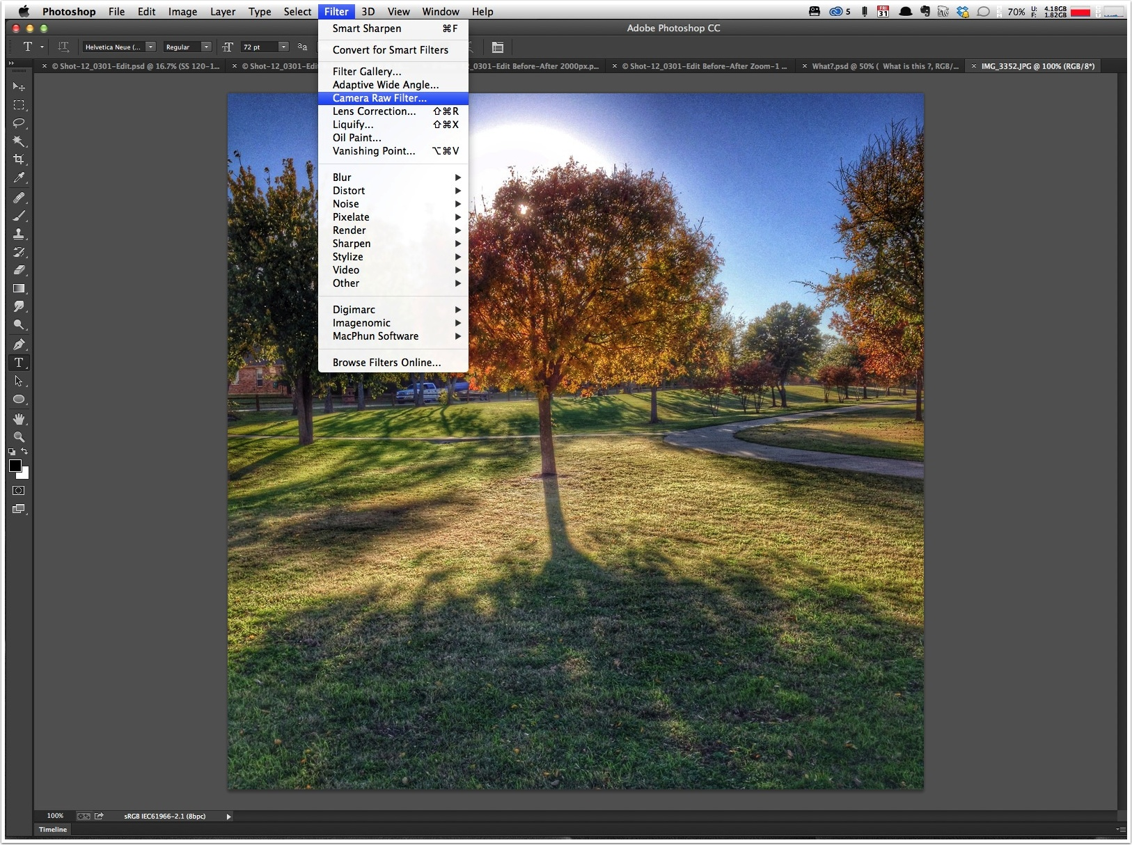 filter-menu---camera-raw-filter.jpg