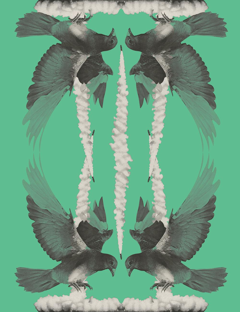 bird-missels.jpg