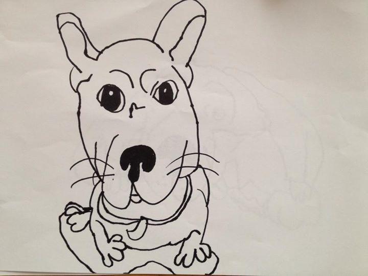 Ema (9) Dog 1