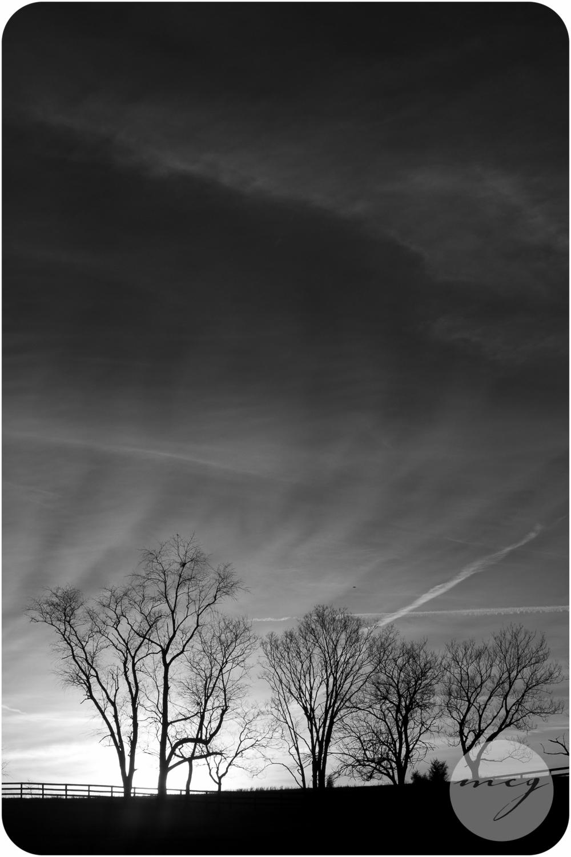 mcg_photography2-7664.jpg