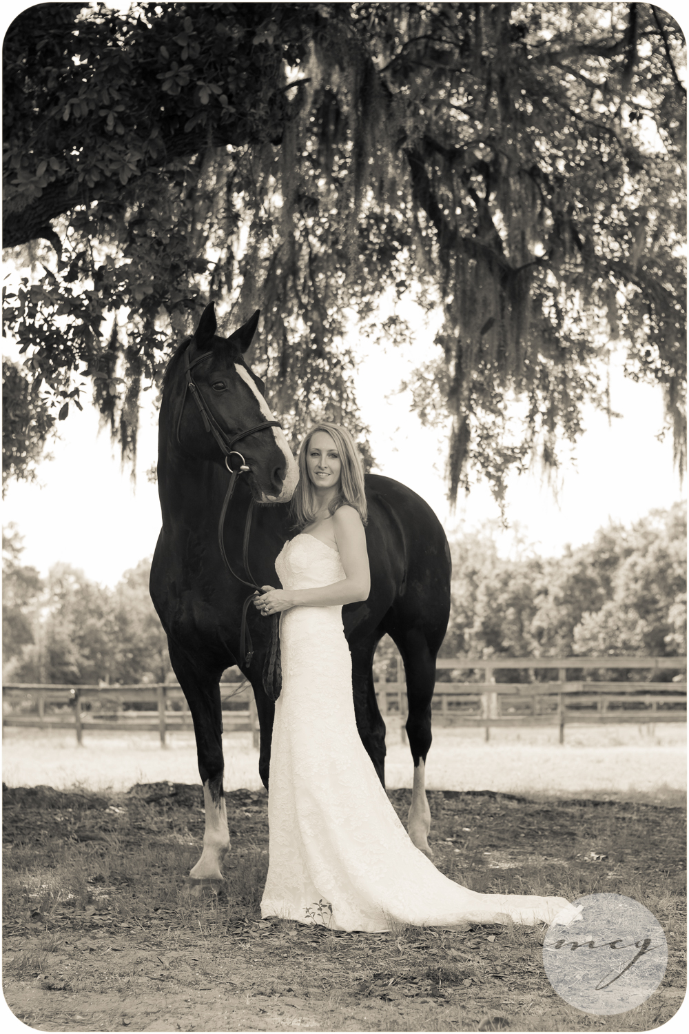 Johns Island South Carolina equine photographer
