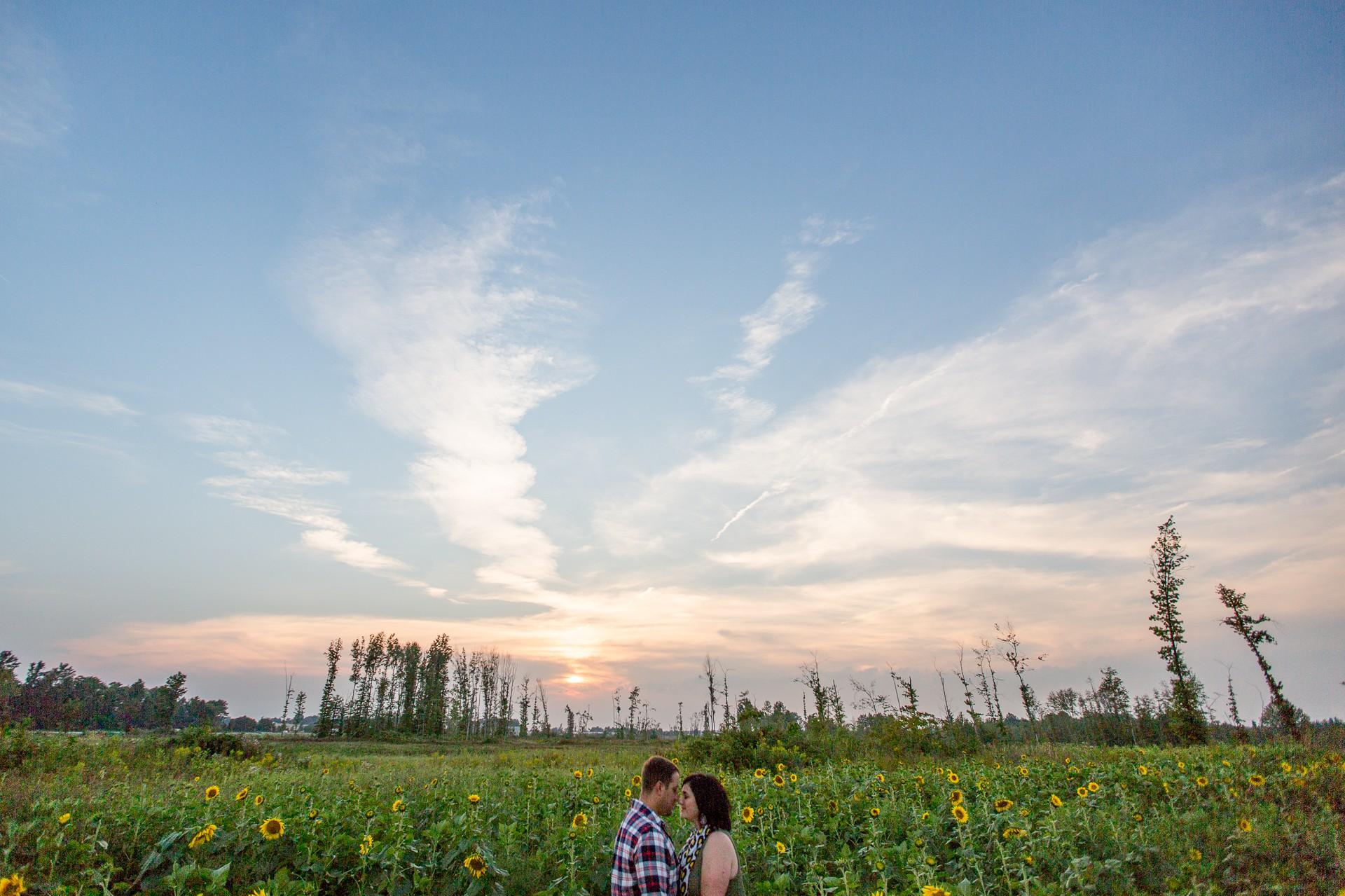 Cleveland Sunflower Field Photos-9.jpg