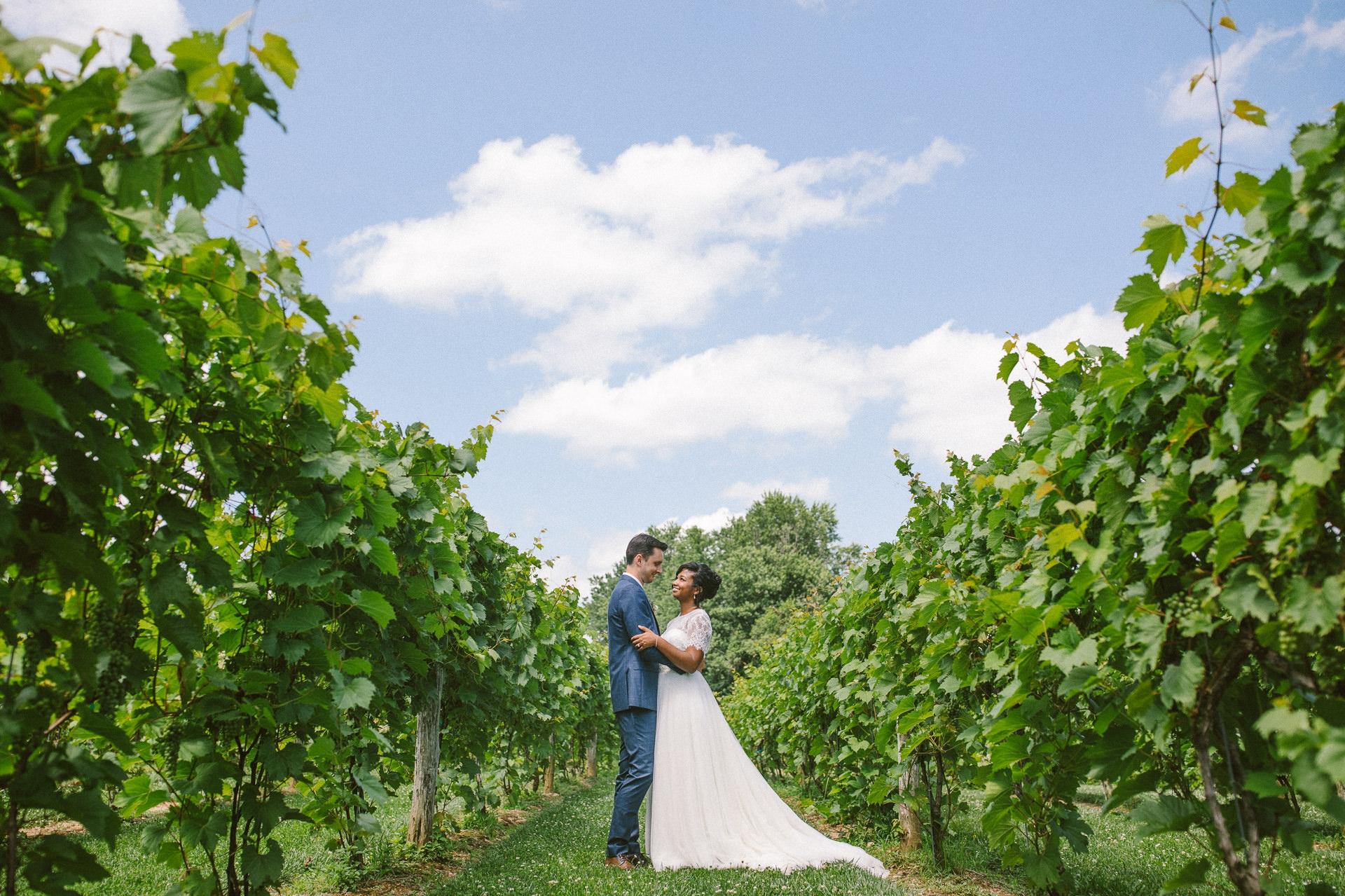 Gervasi Wedding Photographer in Canton Ohio 1.jpg