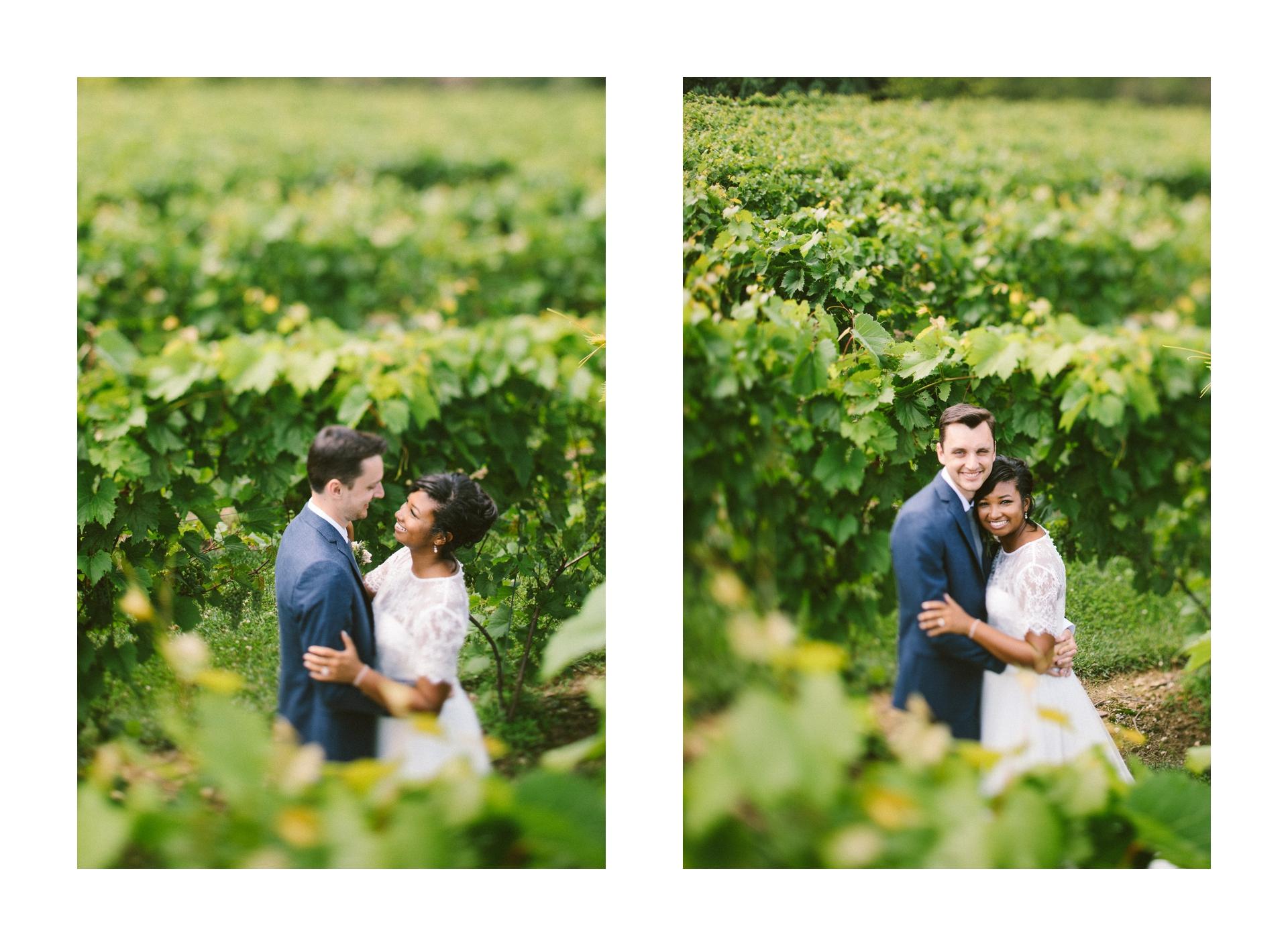Gervasi Wedding Photographer in Canton Ohio 35.jpg