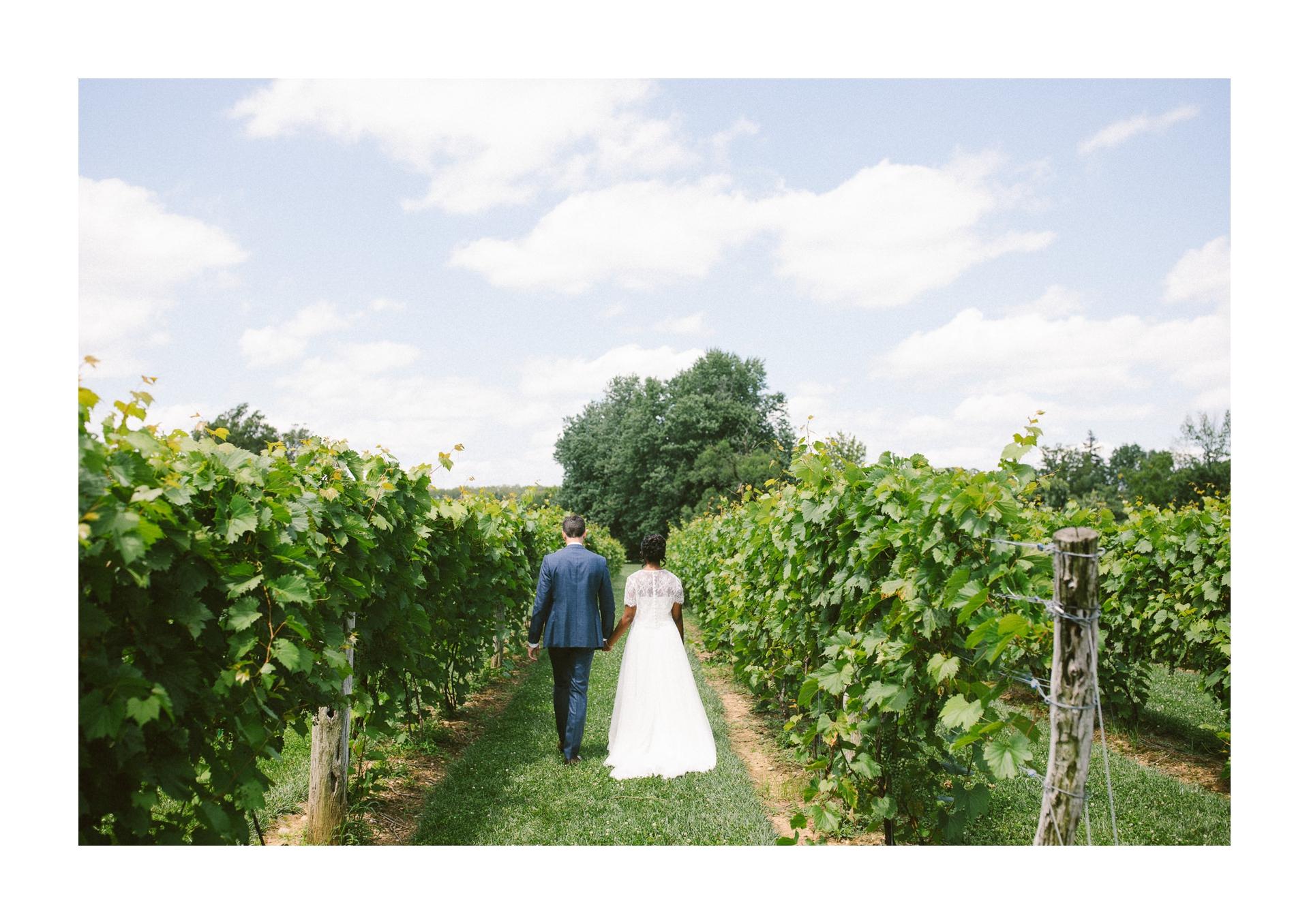 Gervasi Wedding Photographer in Canton Ohio 36.jpg