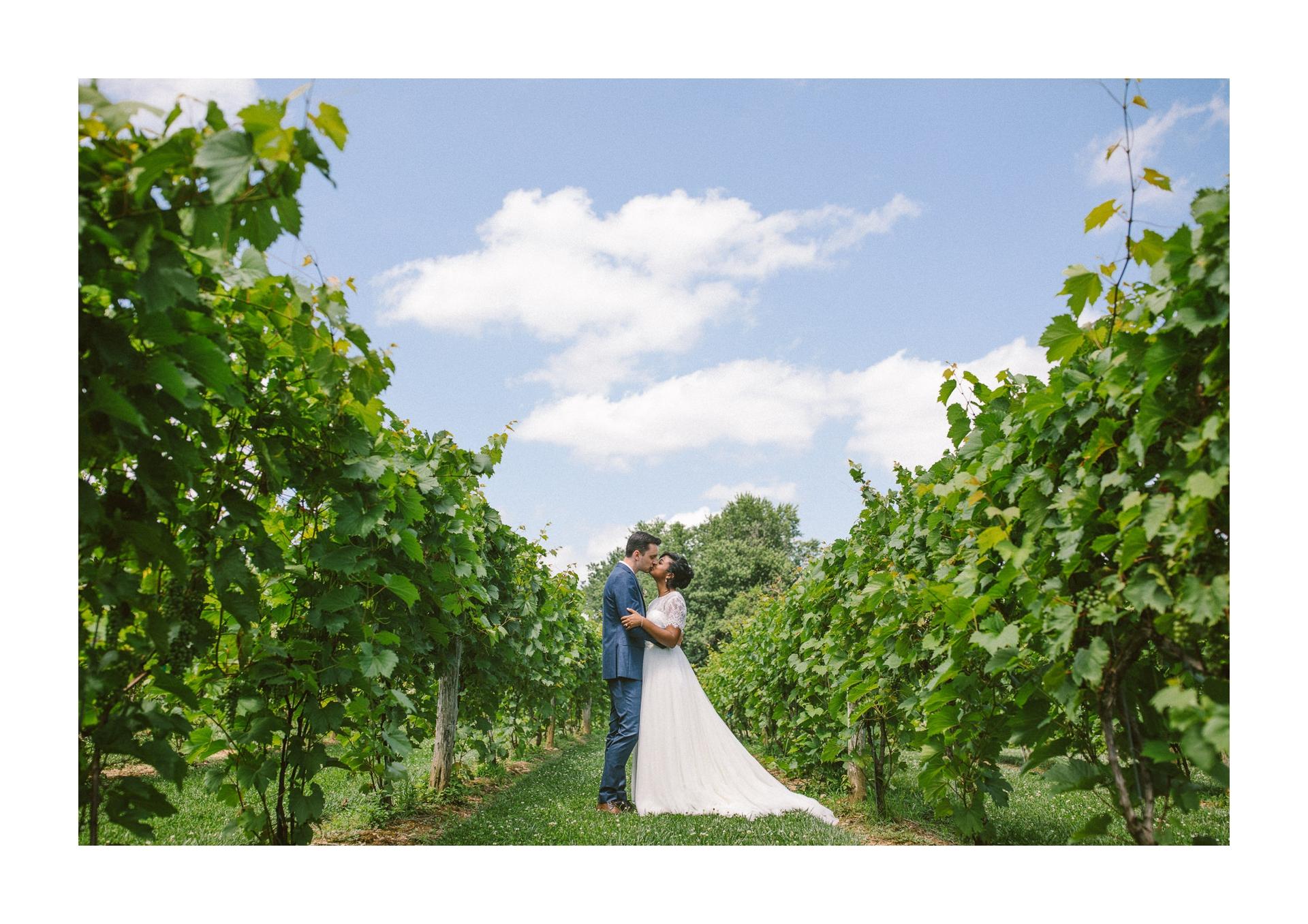 Gervasi Wedding Photographer in Canton Ohio 38.jpg
