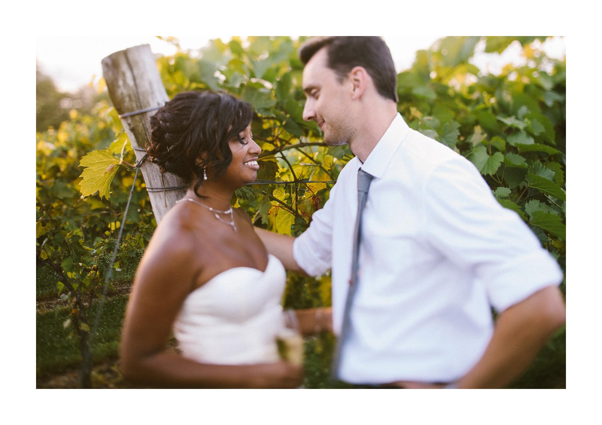Gervasi Wedding Photographer in Canton Ohio 90.jpg