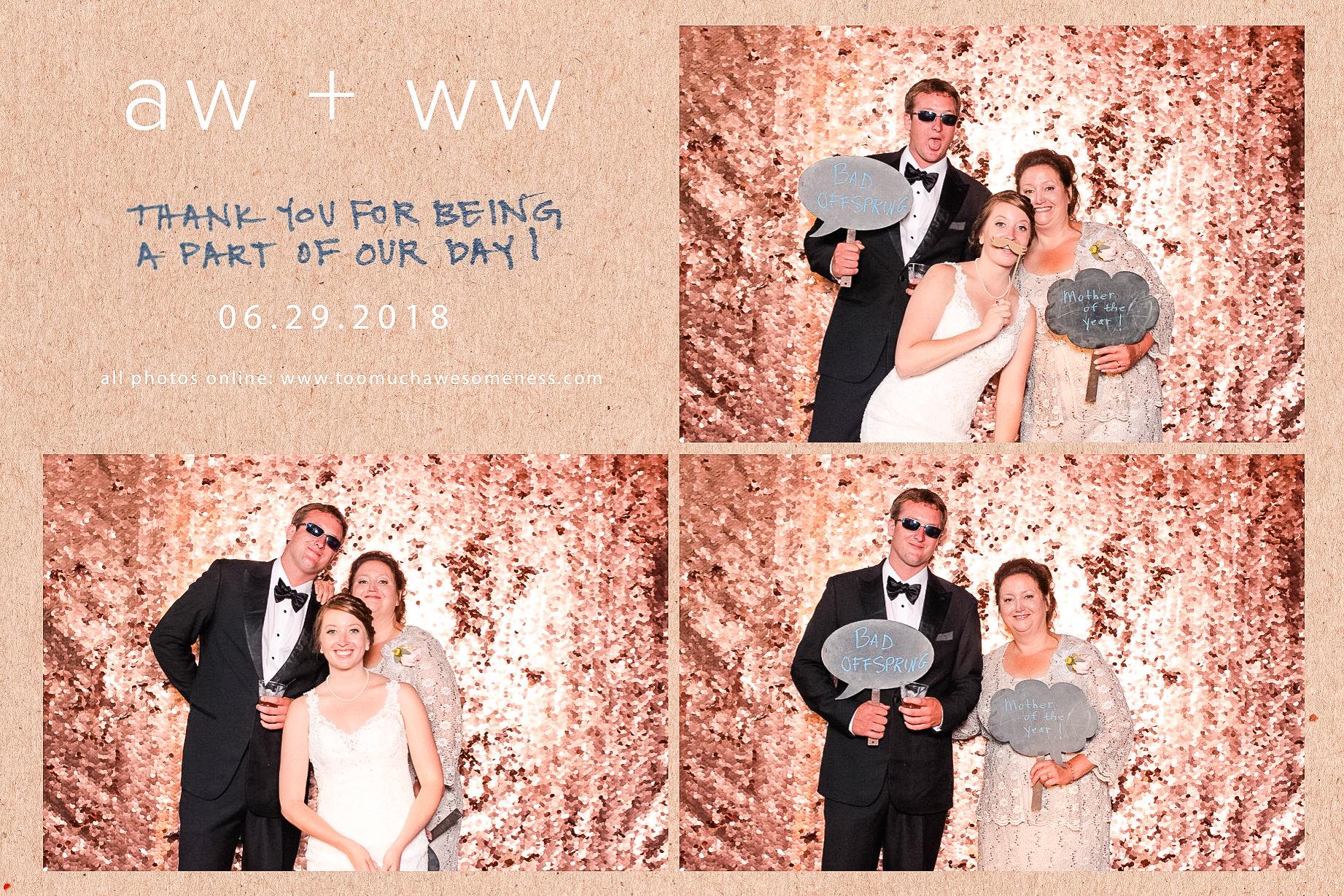 00112 Meadow Ridge Farms Wedding PHotobgrapher Photobooth.jpg
