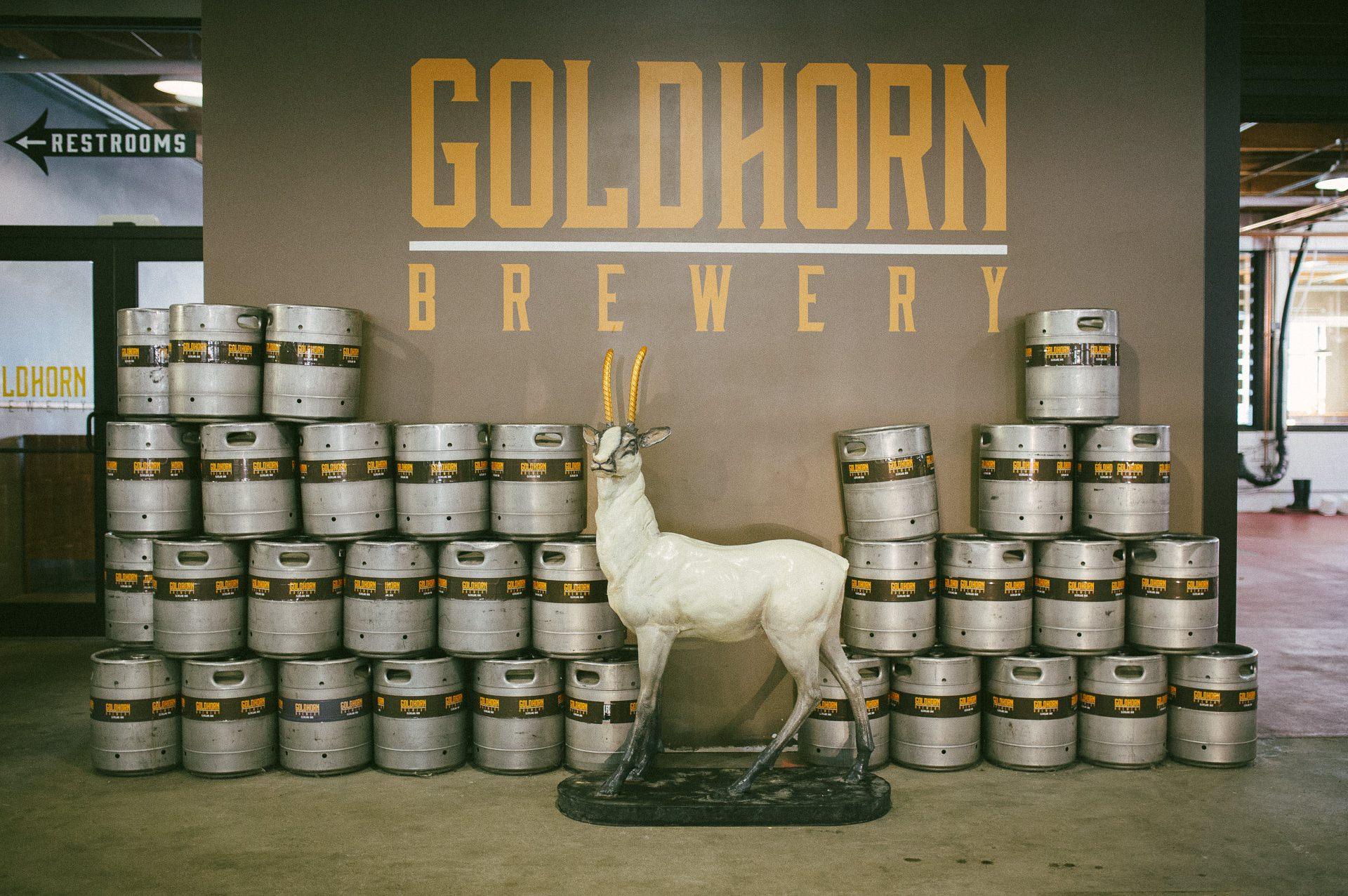 Goldhorn Brewery Wedding Photos in Cleveland 2 8.jpg