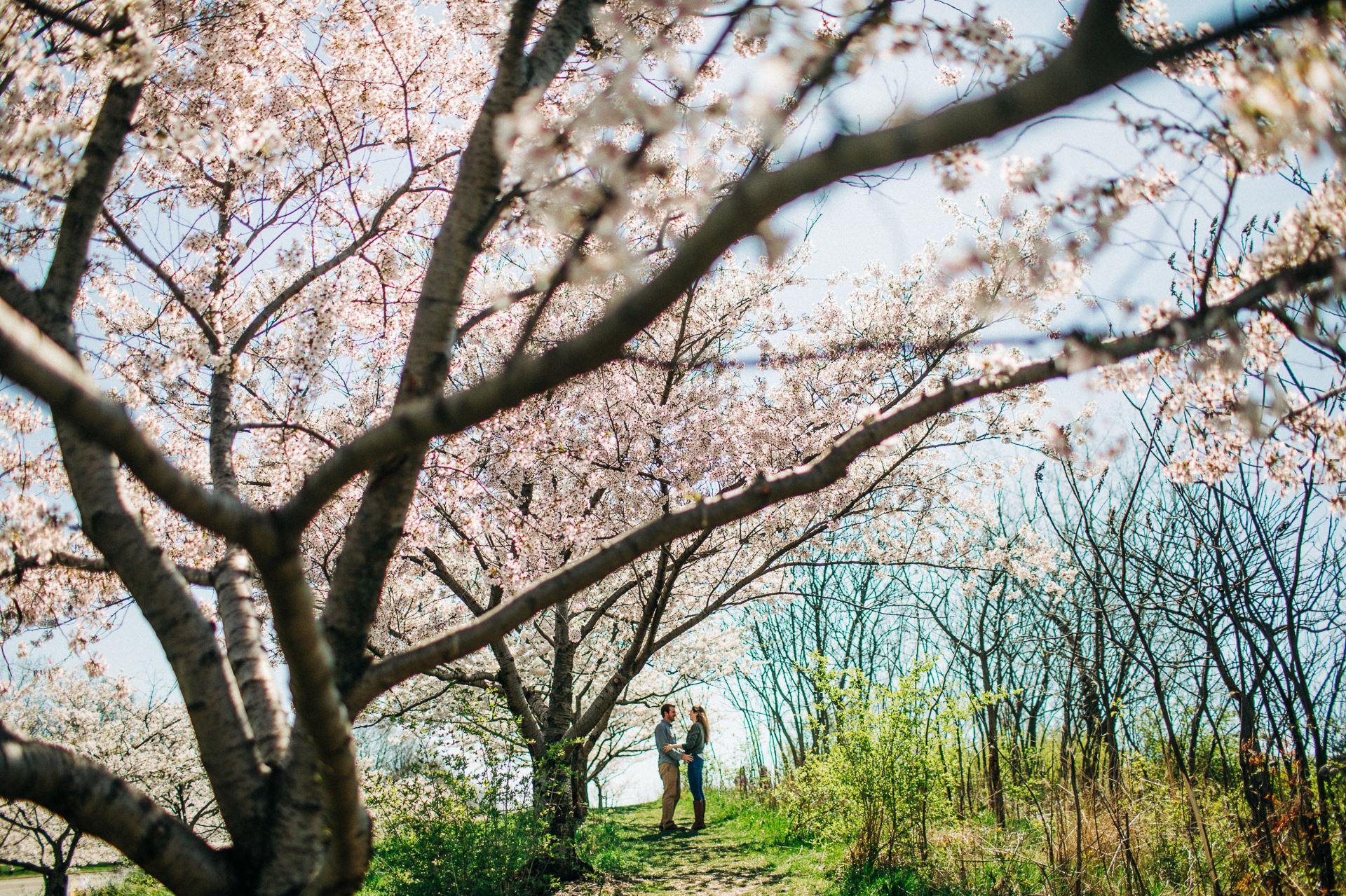 Cleveland Spring Engagement Photos 1.jpg