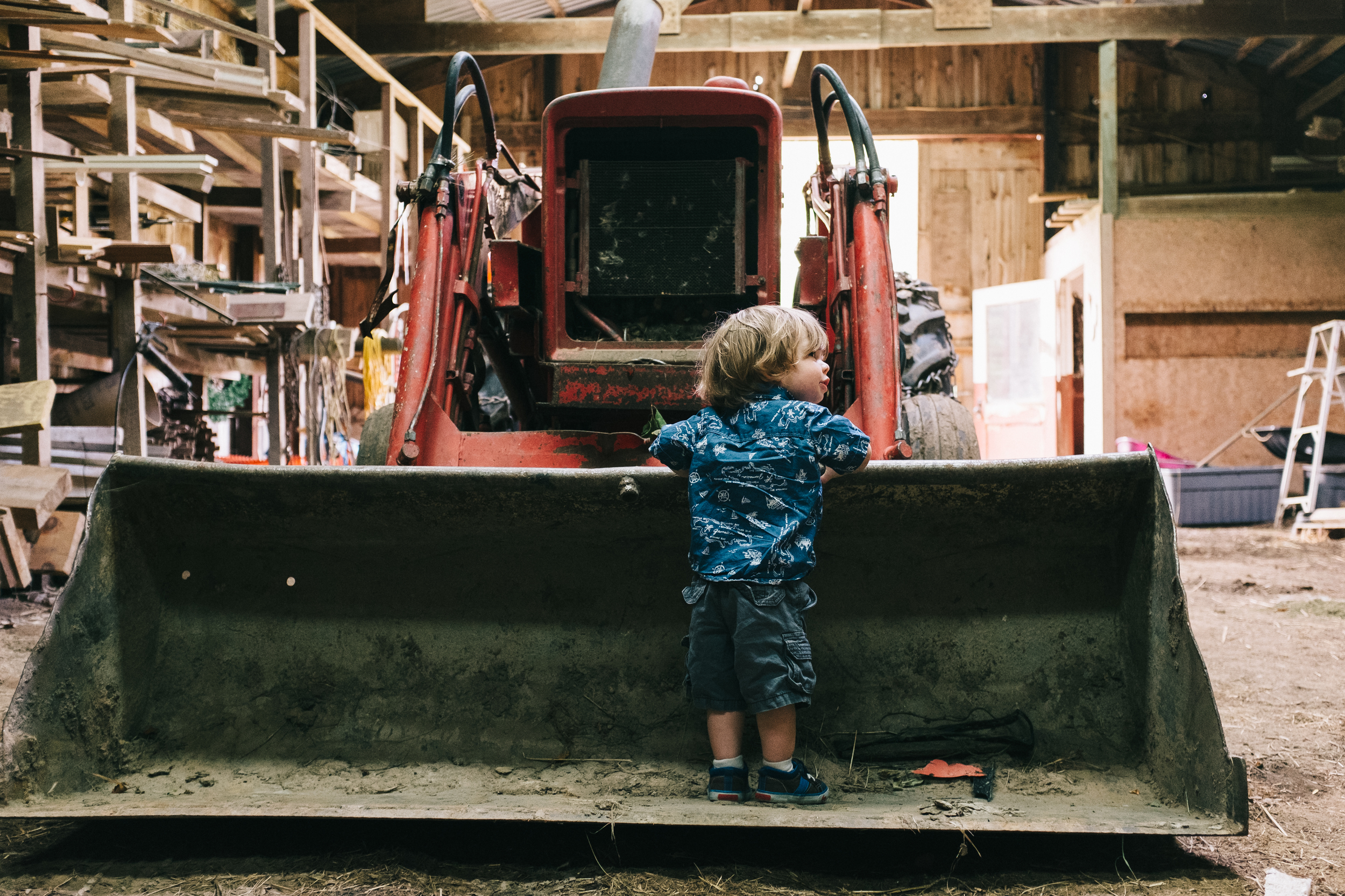 A Boy and his First Tractor.