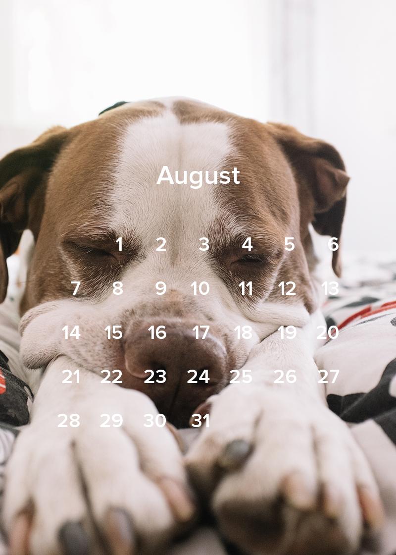 2016 Calendar August.jpg