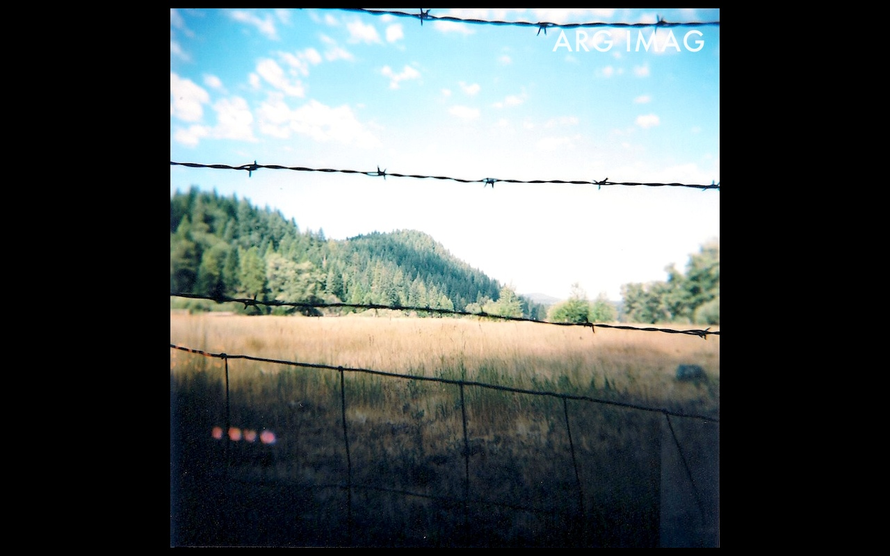 (Holga 120GN, Expired film)