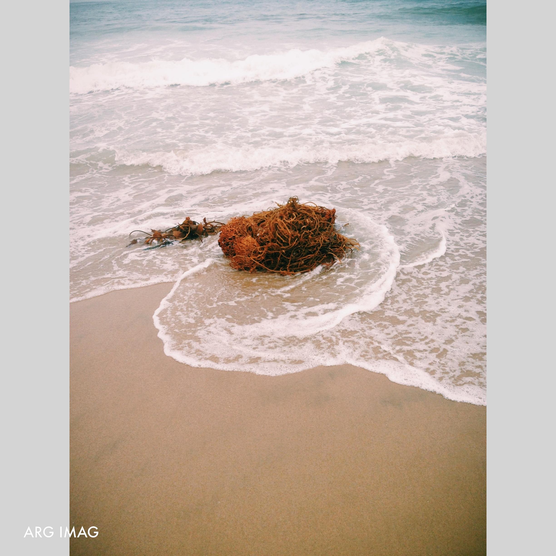 Top July 2013 ARG IMAG Photography Instagram (5).jpg