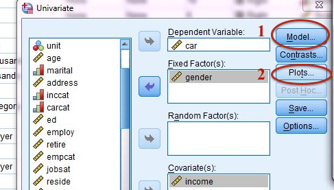 How to Plot Interaction Effects in SPSS Using Predicted Values
