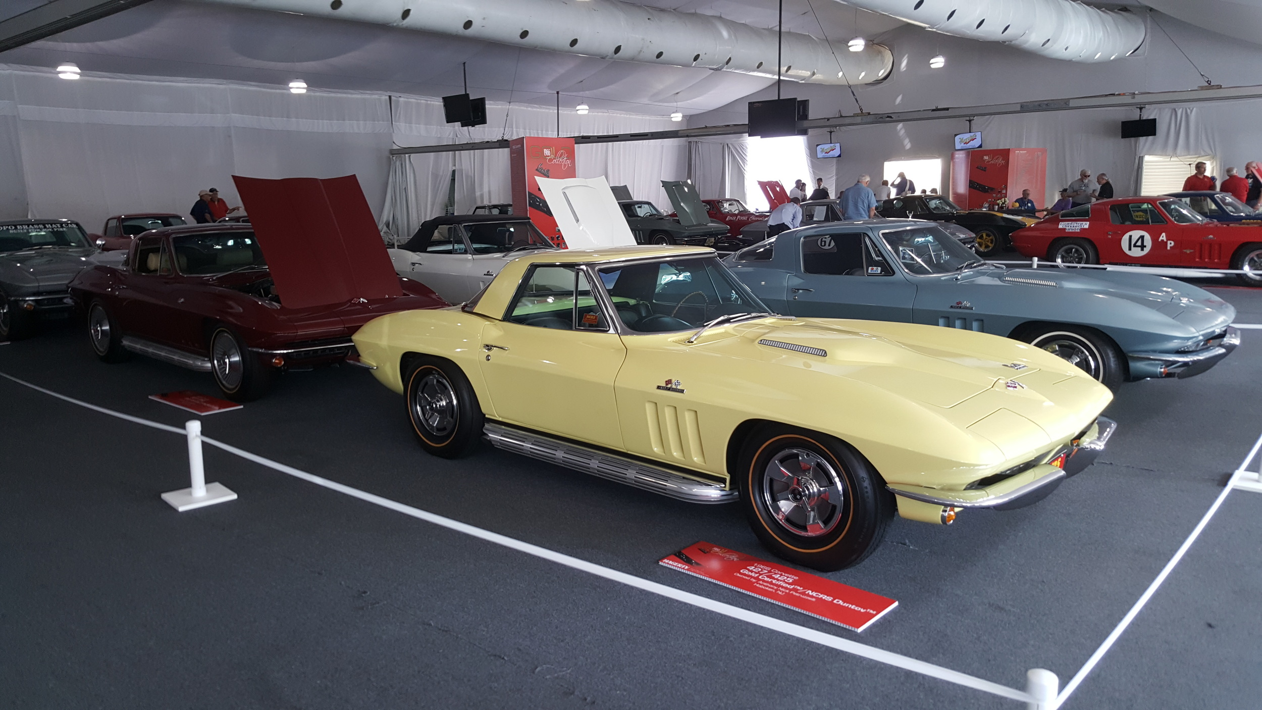 The 1966 Vette is 50 years old and were featured this year