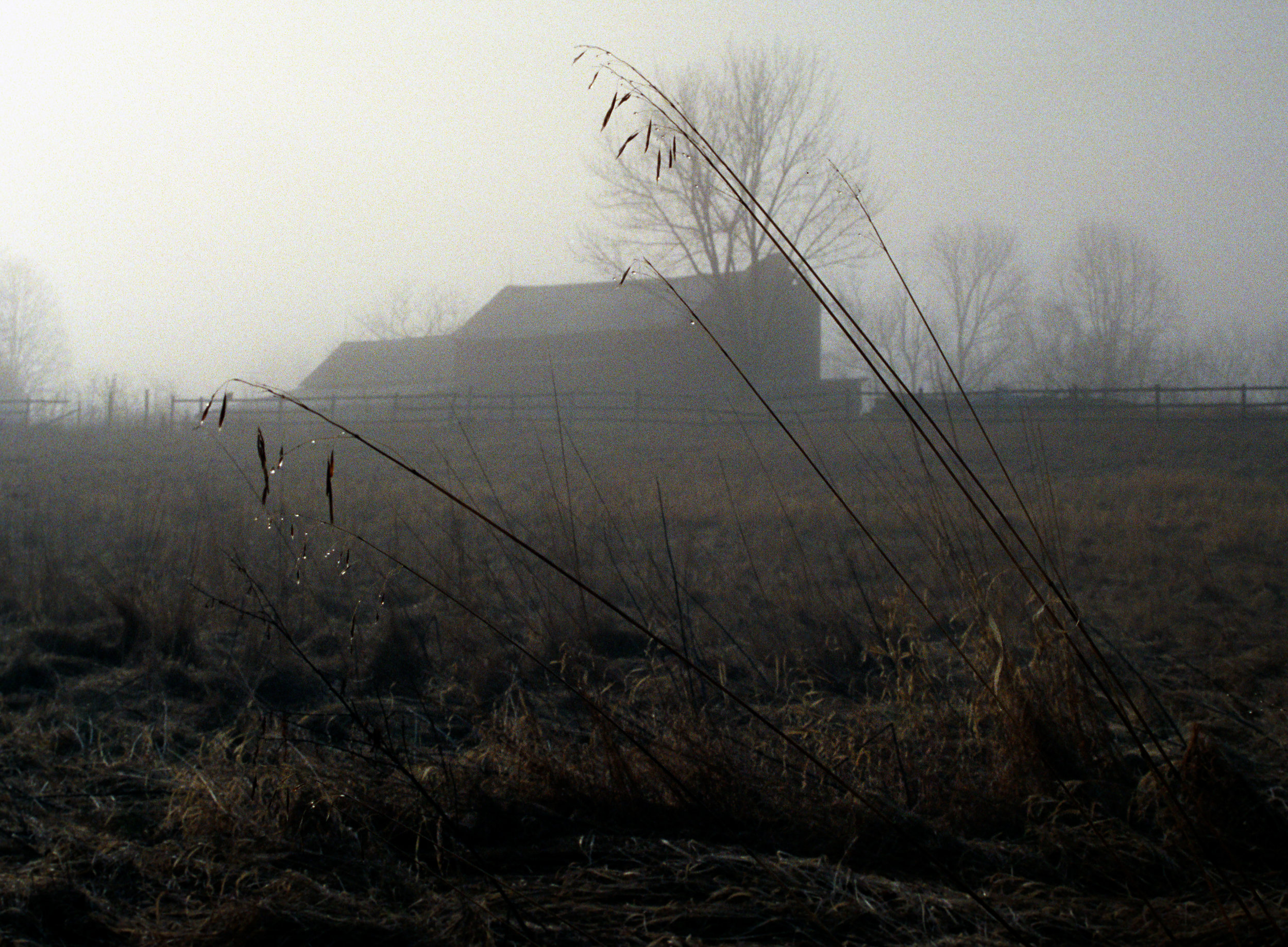Home9_colour.jpg