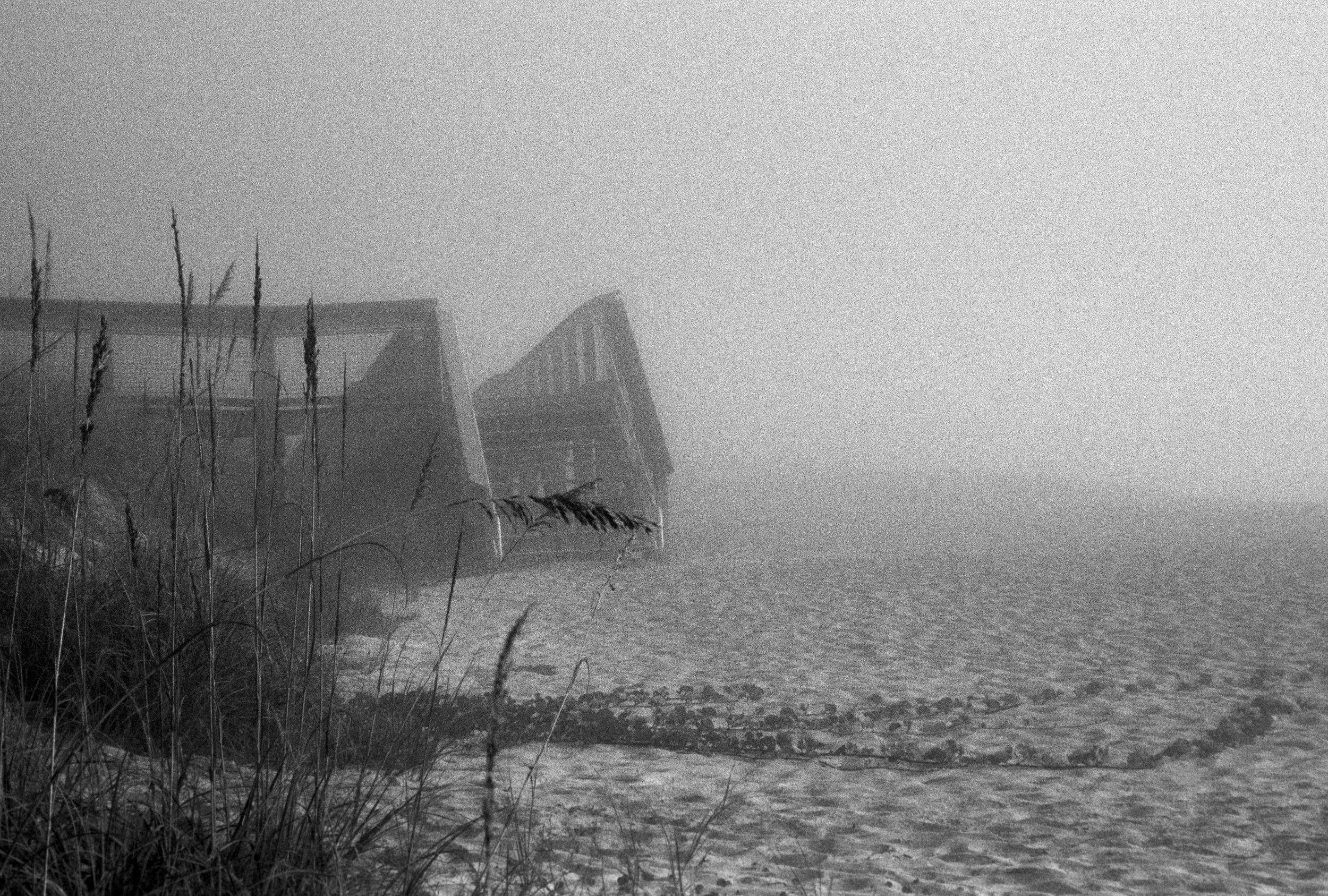 Marshy-fog24_BW.jpg
