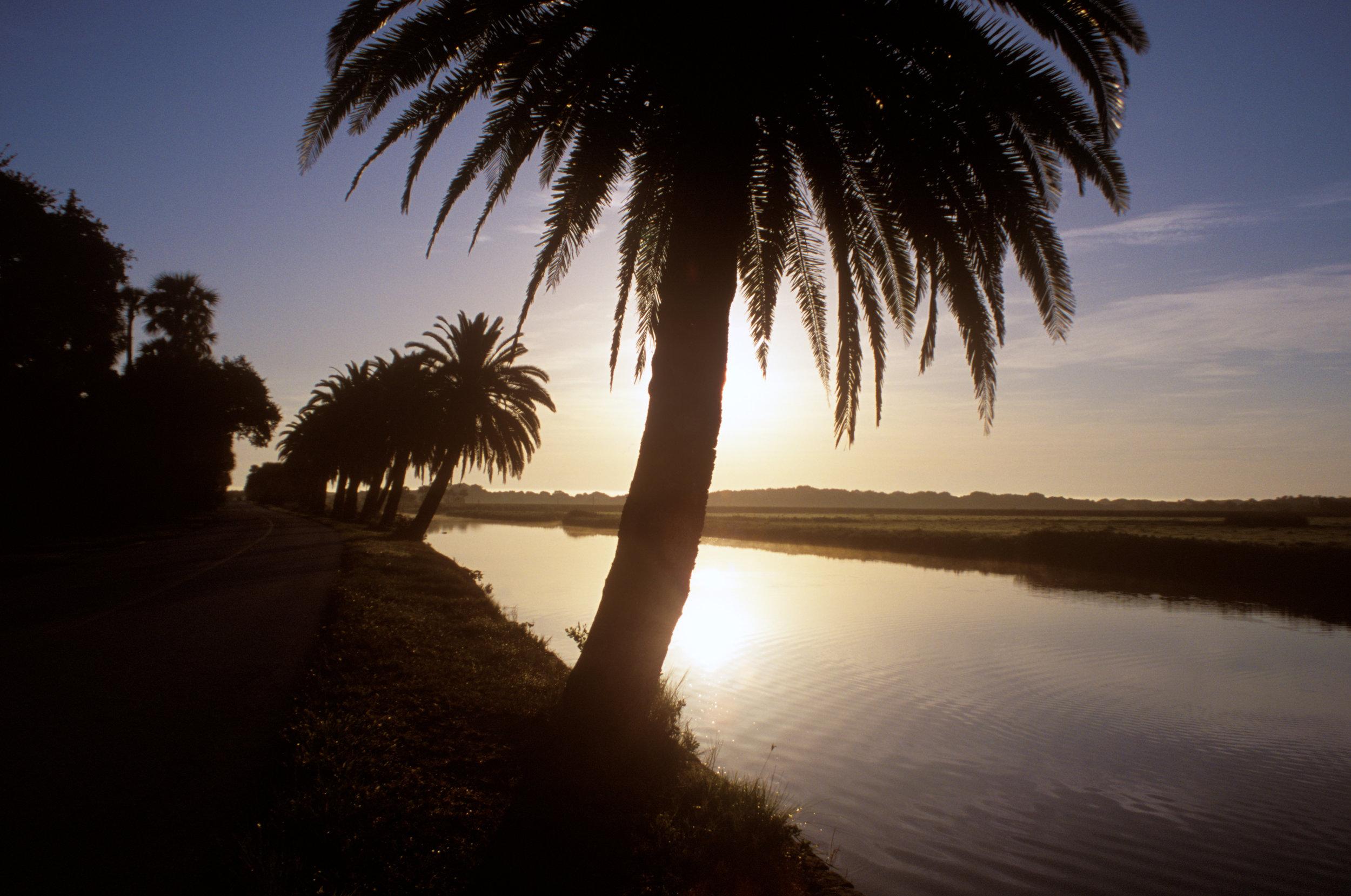 Florida1.jpg
