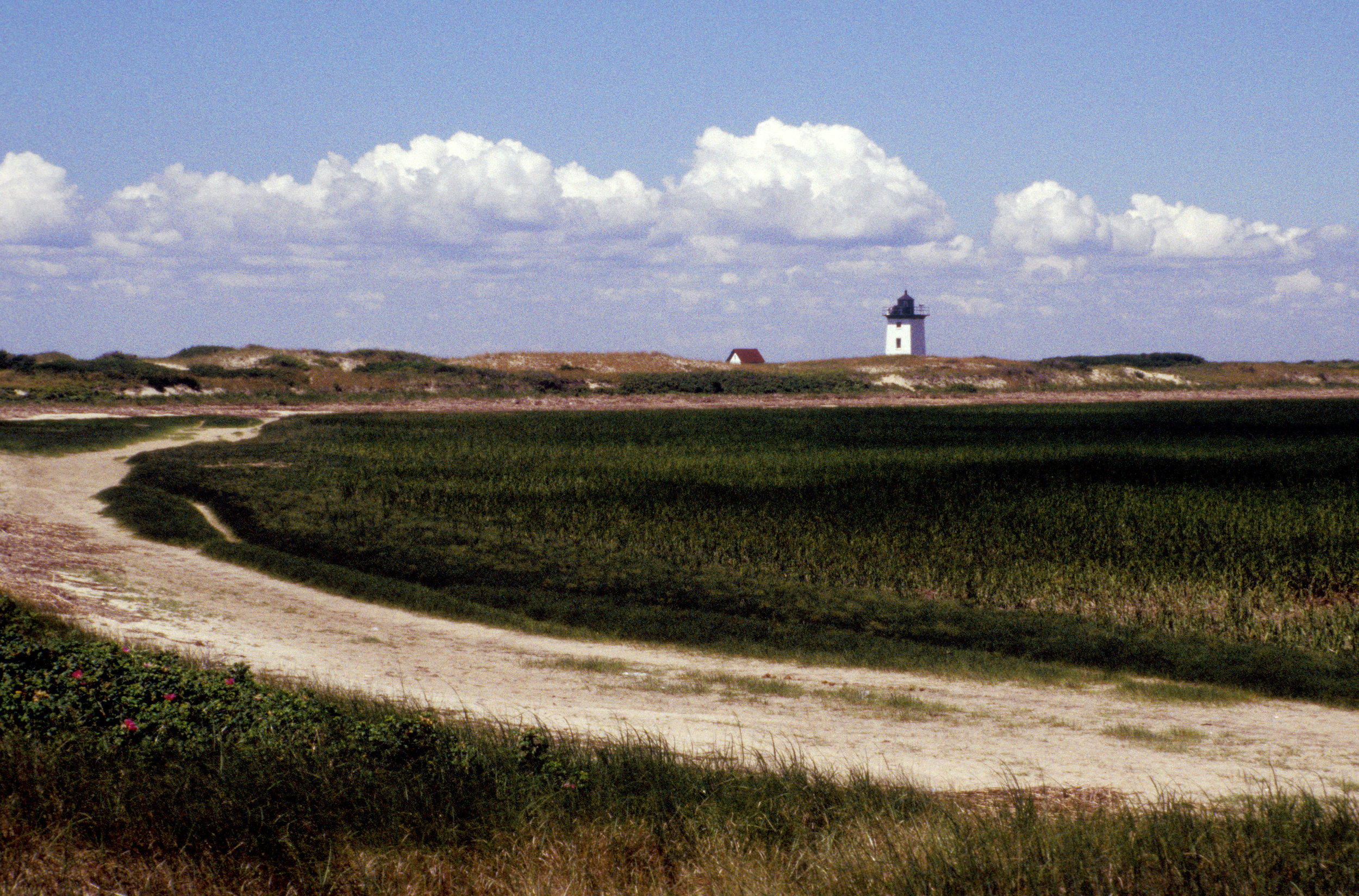 Ptown-Lighthouse-C2.jpg