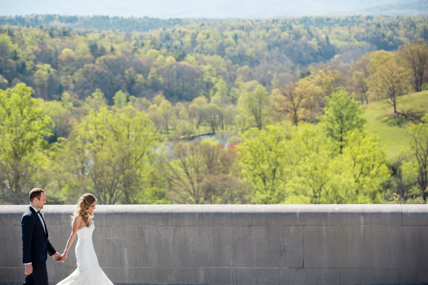 Biltmore Estate Wedding 17.jpg