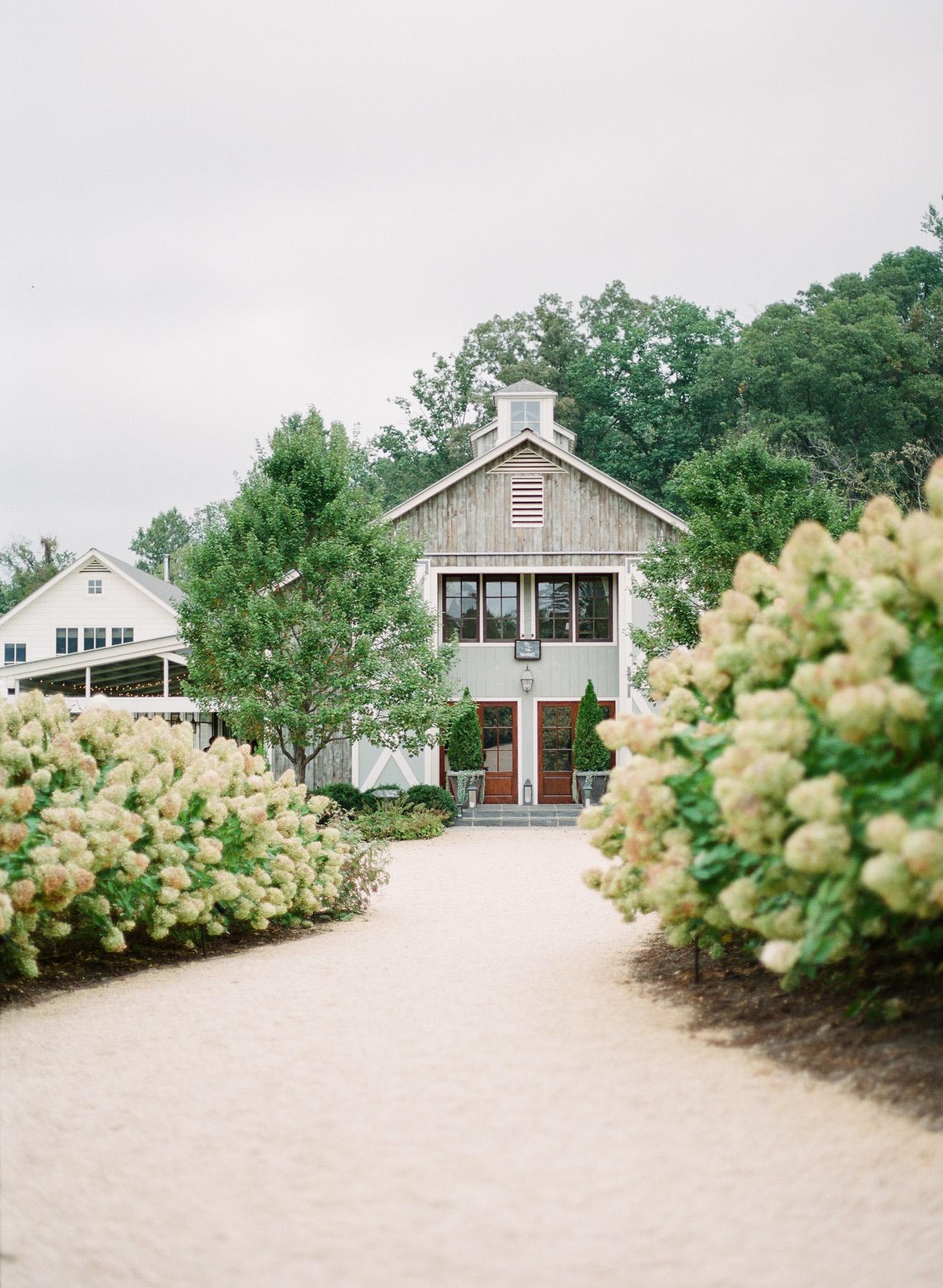 Pippin-Hill-Farm-and-Vinyards-Wedding-Film-Photography-20.jpg