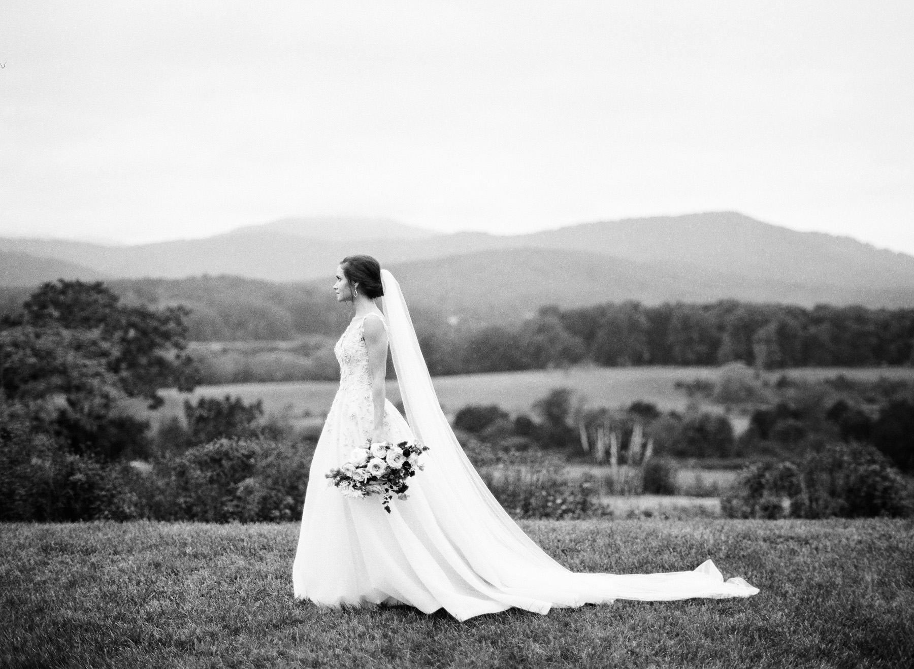 Pippin-Hill-Farm-and-Vinyards-Wedding-Film-Photography-05.jpg