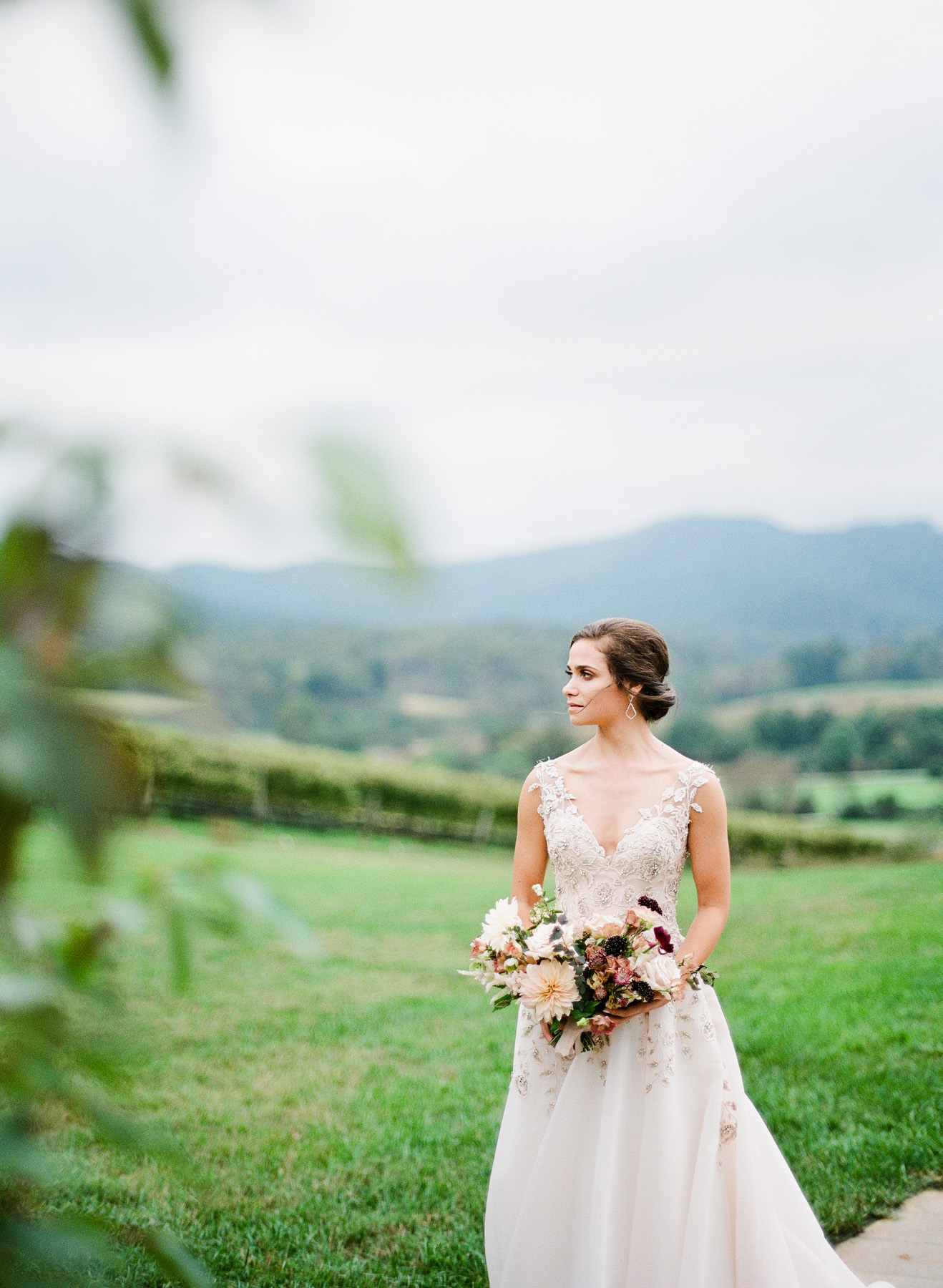 Pippin-Hill-Farm-and-Vinyards-Wedding-Film-Photography-12.jpg