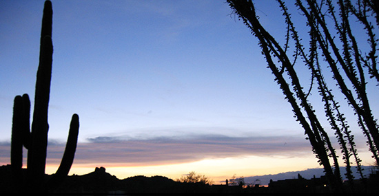 desert-landscape-arizona_50x285.jpg