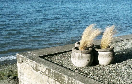 MYD-blog-whidbey-island-langley-coastline-550x350.jpg