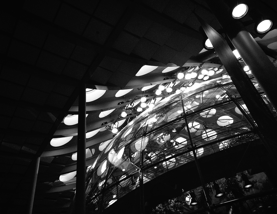 interior view of the 90-ft diameter rainforest dome  | Academy of Sciences