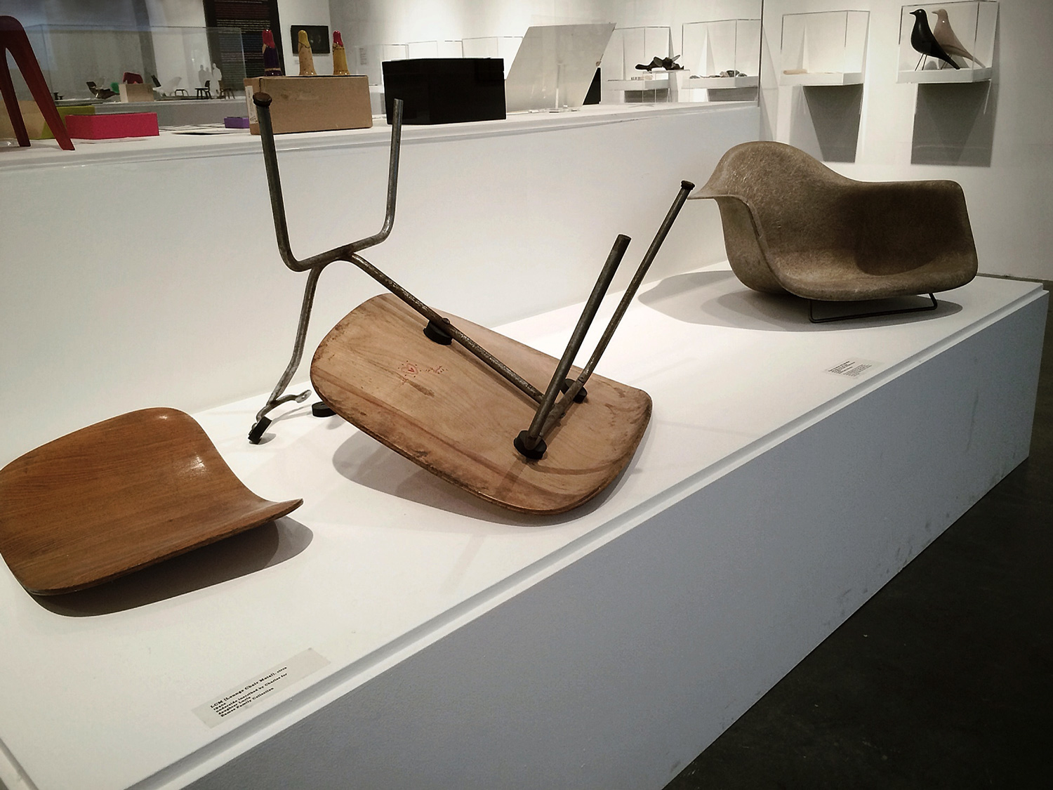 Eames Exhibit / original molded chairs