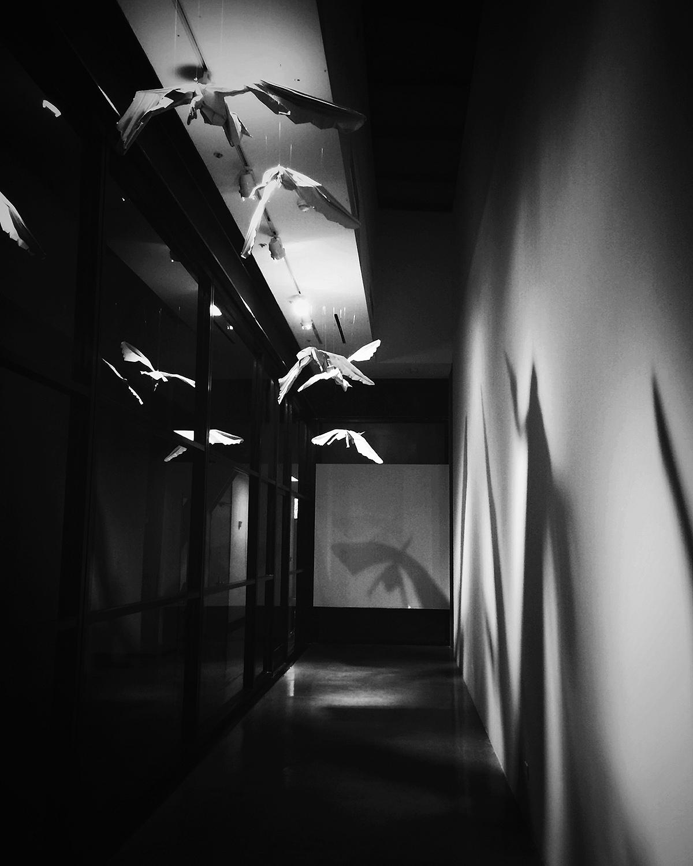 hallway installation