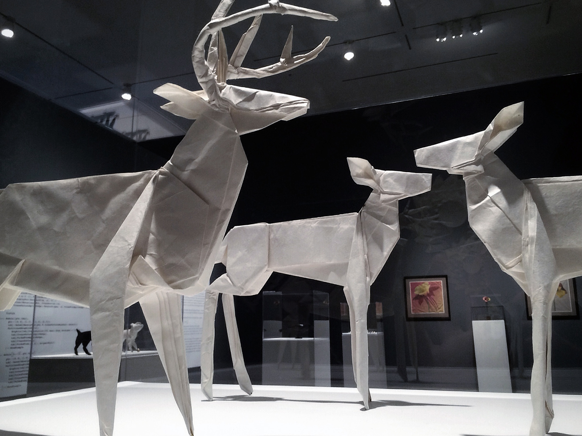 large-scale origami