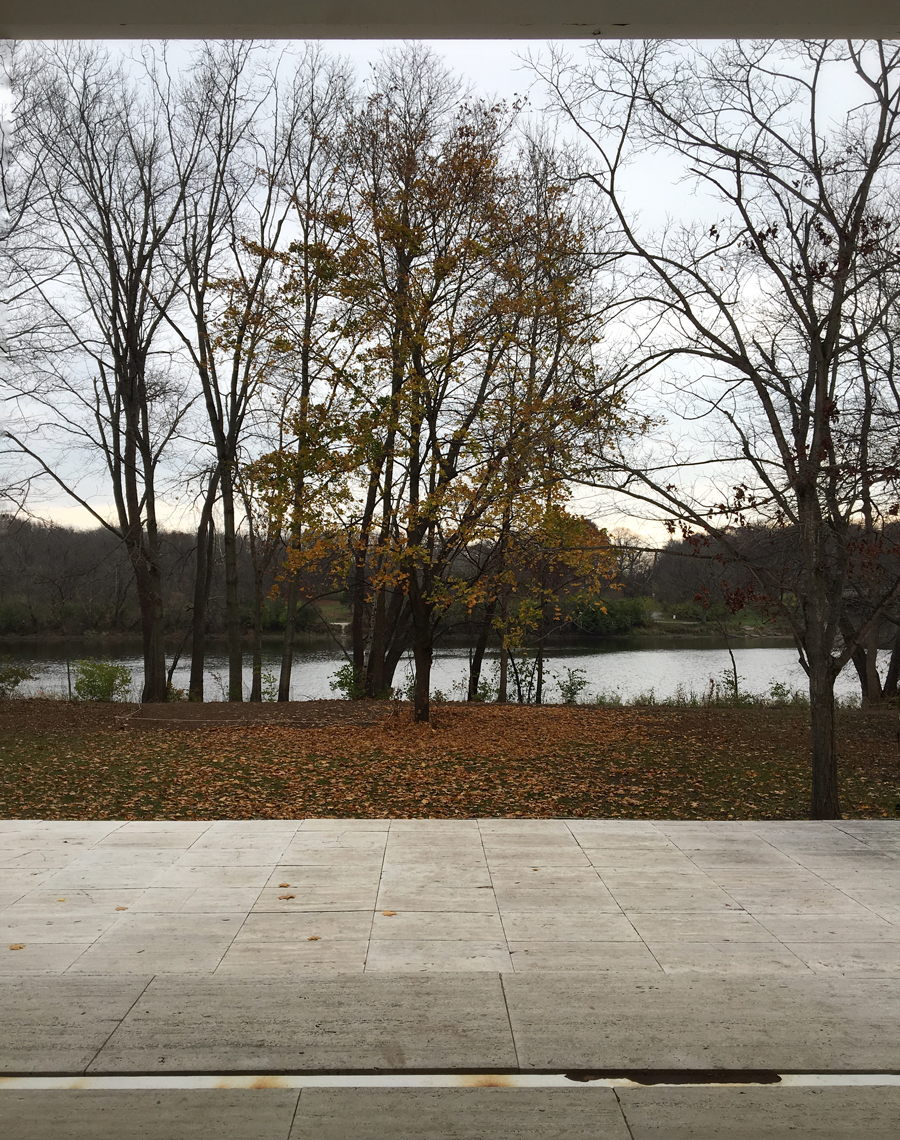 view from entry porch / fall at the farnsworth house
