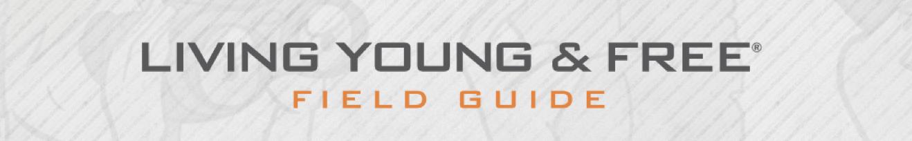LYandF-website-header.png