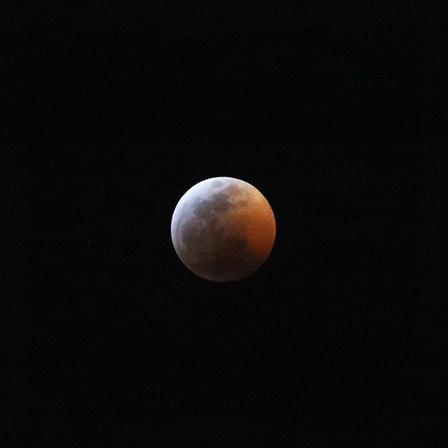 In starlit nights I saw you  So cruelly you kissed me  Your lips a magic world  Your sky all hung with jewels  The killing moon  Will come too soon #bloodmoon
