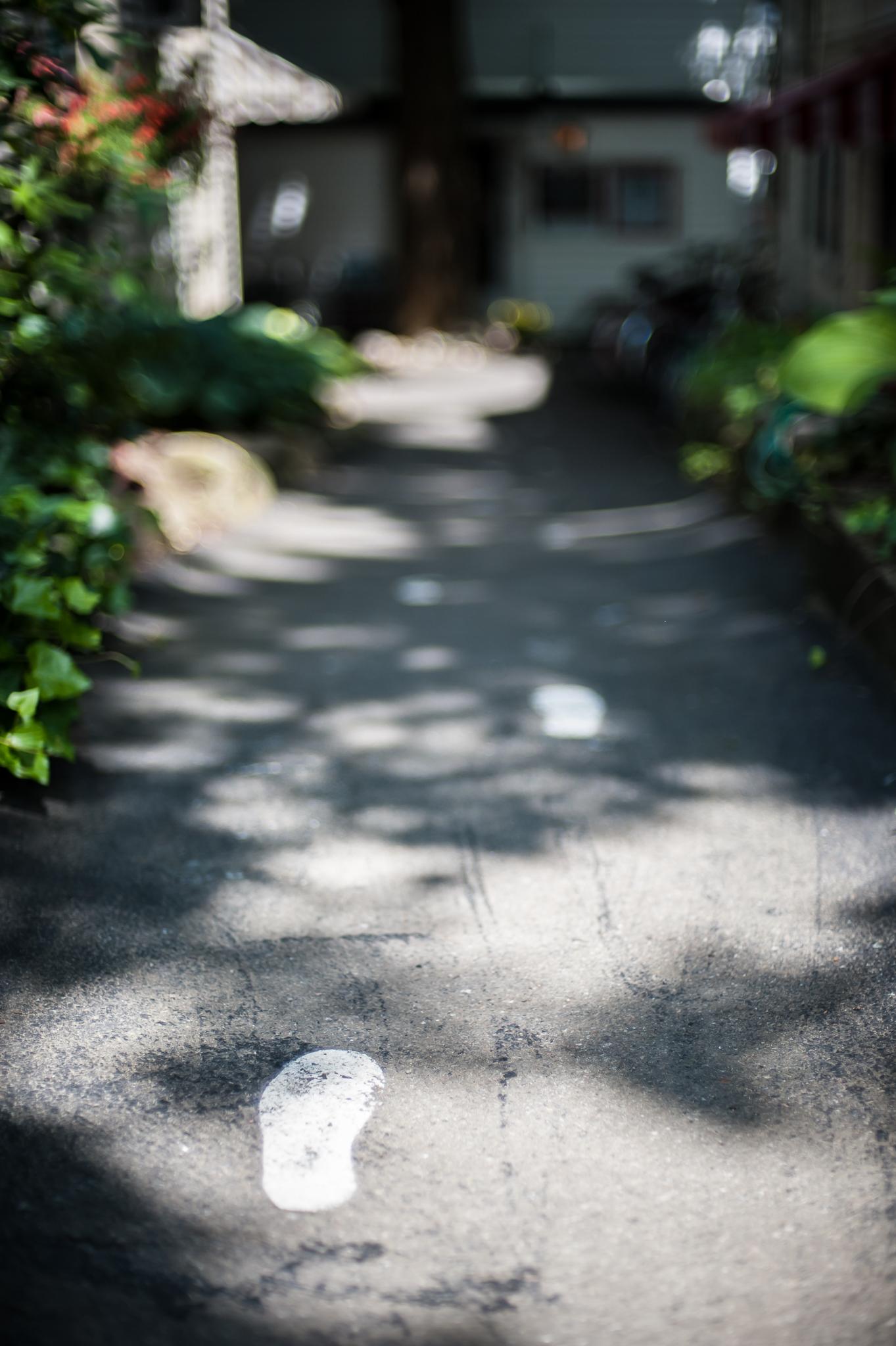 Pete Wright — Walks, Alone.jpg