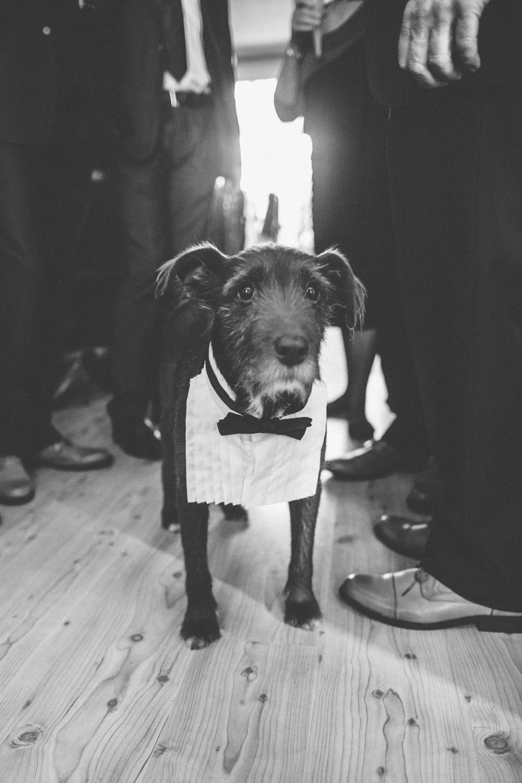 Best Irish Wedding Photography
