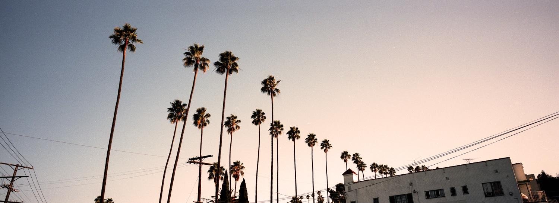 LOS ANGELES, CA / HASSELBLAD XPAN / PORTRA 400