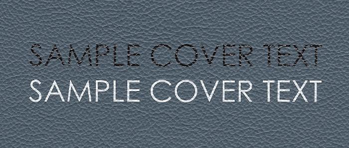 Airforce Blue_CoverPrinting.jpg