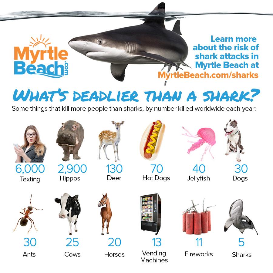 SharkPromo.jpg