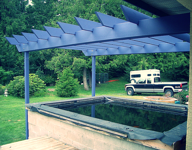 Adding a pergola over the top of a koi pond is an option to prevent excessive sunlight.