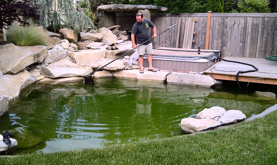 A long dip net helps with cleaning out debris that has settled at the bottom of the pond.